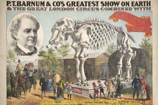 barnum-poster-960x640