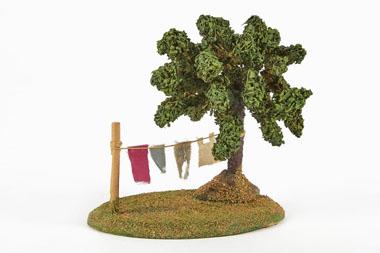 Baum Wäsche