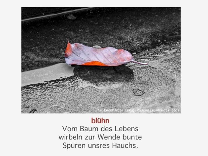 blühn_Leonhardt